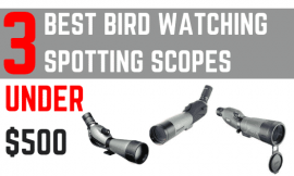 Best Spotting Scope for Birding [Under $499] – A Helpful Buyer's Guide