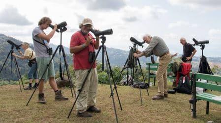 Birding Angled Spotting Scope