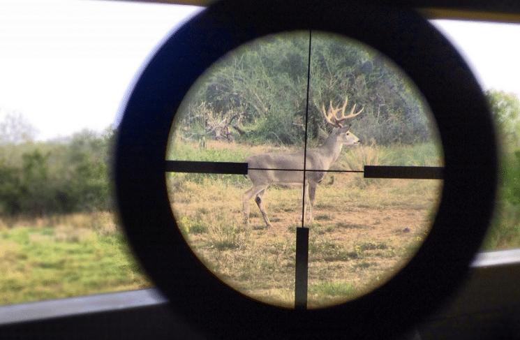 Deer-hunting-scope-reticle-crosshair