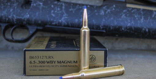 300 weatherby ammo