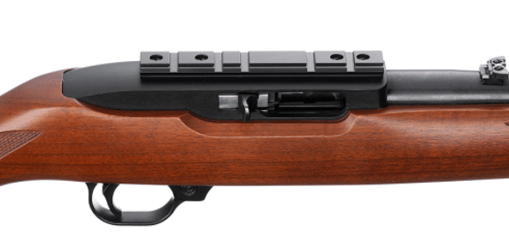 ruger 10 22 with weaver style optic mount