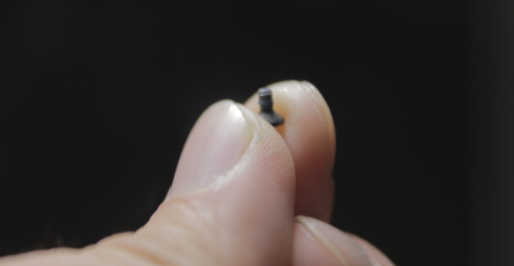 holosun 507c x2 battery tray screw